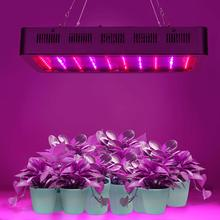 test et avis TOPLANET Dimmable 300w led horticole